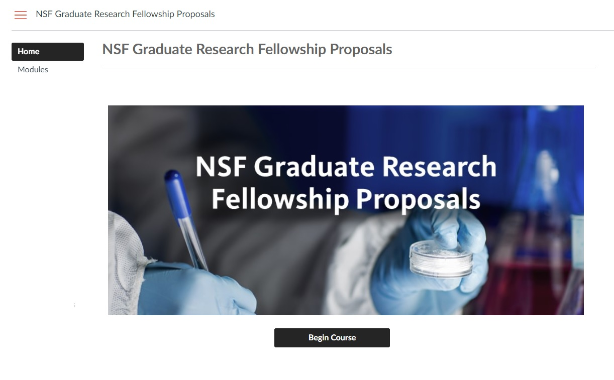 Screen clipping from the home page of the NSF course.